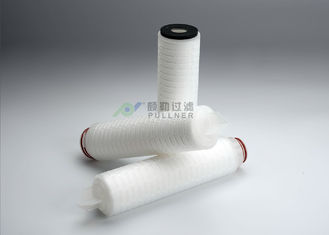 China 100% Integrity Test PTFE Membrane Filter Cartridge 0.22um Absolute Rating supplier